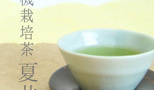 有機栽培茶「夏井」|鬼塚製茶